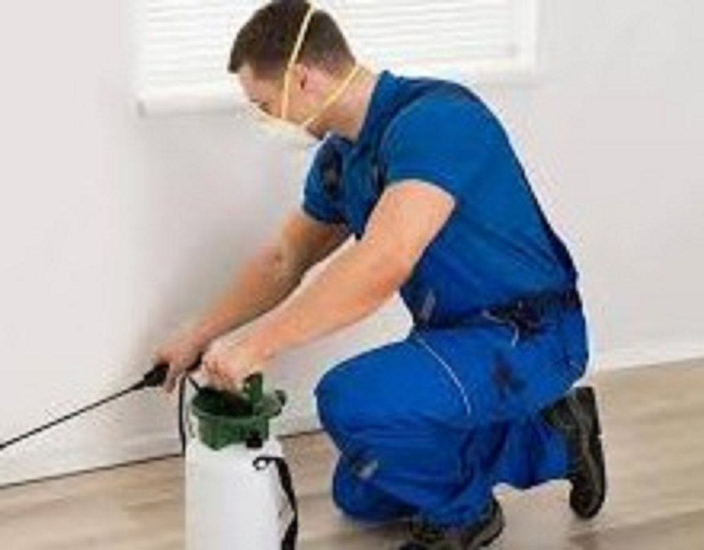 Pest Control Trivandrum | Termite Control Trivandrum | Post Construction Termite Treatment | Pest Control Kerala | Pest Control & Cleaning Services
