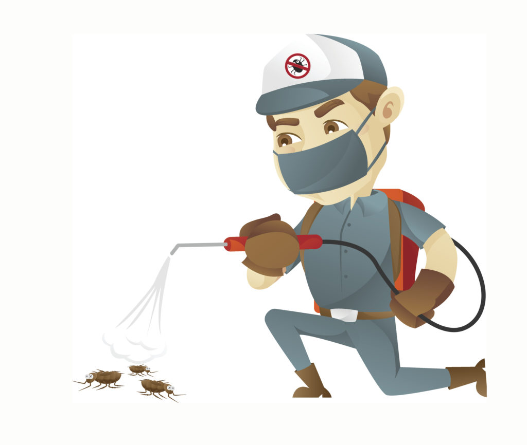 Low-cost pest control service provider in Trivandrum